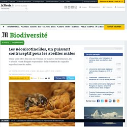 LE TEMPS 27/07/16 Les néonicotinoïdes, un puissant contraceptif pour les abeilles mâles