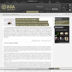 INRA 21/11/15 Néonicotinoïdes et abeilles : la désorientation des individus confirmée en plein champ, la colonie adapte sa stratégie