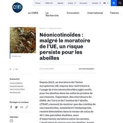 CNRS 27/11/19 Néonicotinoïdes : malgré le moratoire de l'UE, un risque persiste pour les abeilles