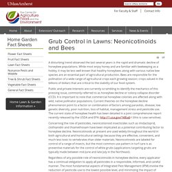 UMassAmherst 05/06/14 Grub Control in Lawns: Neonicotinoids and Bees