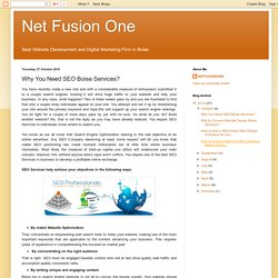 Net Fusion One: Why You Need SEO Boise Services?
