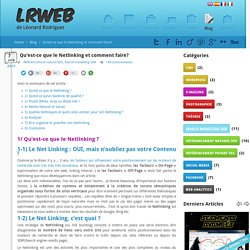 Le Netlinking : comment définir une stratégie de Link Building?