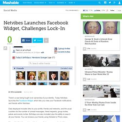 Netvibes Launches Facebook Widget, Challenges Lock-In