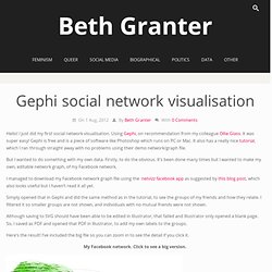 Gephi social network visualisation