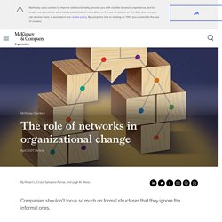 The role of networks in organizational change