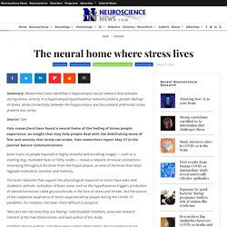 The neural home where stress lives