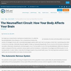The Neuroaffect Circuit: The Essential Guide to How Body Affects Mind