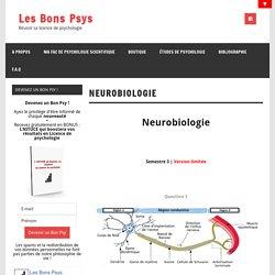 Neurobiologie - Les Bons Psys
