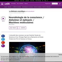 Neurobiologie de la conscience / Alzheimer et épilepsie / Machines moléculaires