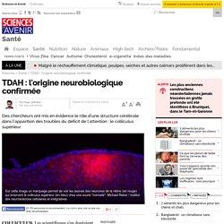 TDAH : l'origine neurobiologique confirmée