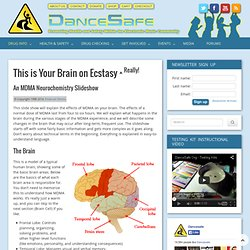Ecstasy Slideshow (This Is Your Brain on Ecstasy) | DanceSafe.Org