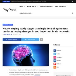 Neuroimaging study suggests a single dose of ayahuasca produces lasting changes in two important brain networks