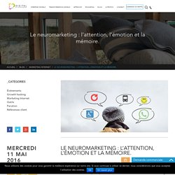 Le neuromarketing : l'attention, l'émotion et la mémoire. - Blog Digital Effervescence