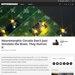 Neuromorphic Circuits Don't Just Simulate the Brain, They Outrun It