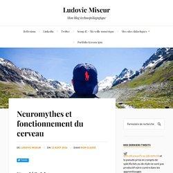 Neuromythes et fonctionnement du cerveau – Ludovic Miseur