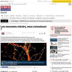Les neurones mirroirs