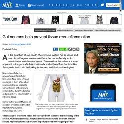 Gut neurons help prevent tissue over-inflammation