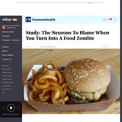 Study: The Neurons To Blame When You Turn Into A Food Zombie