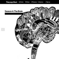 Head teachers: using neuroscience for education - The Long and Short Season 4