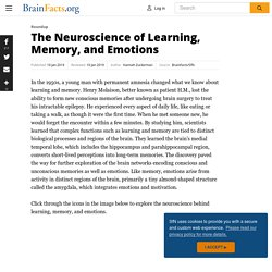 The Neuroscience of Learning, Memory, and Emotions