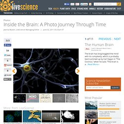 Inside the Brain: A Journey Through Time | Brain Imaging Advances | Neurons & Neuroscience