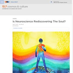 Is Neuroscience Rediscovering The Soul? : 13.7: Cosmos And Culture