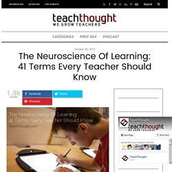 The Neuroscience Of Learning: 41 Terms Every Teacher Should Know