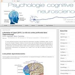 Lafontaine et Lippé (2011). Le rôle du cortex préfrontal dans l'apprentissage