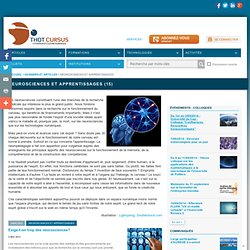 Neurosciences et apprentissages