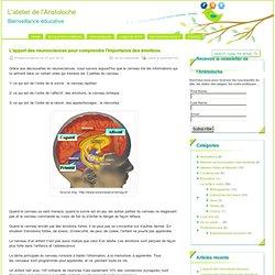 L'apport des neurosciences pour comprendre l'importance des émotions - L'atelier de l'Aristoloche