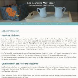 Les neurosciences - Les Ecureuils Montessori
