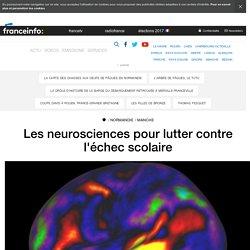 Les neurosciences pour lutter contre l'échec scolaire - France 3 Normandie