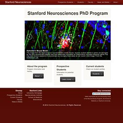 PhD Programs - Neurosciences - Stanford University School of Medicine
