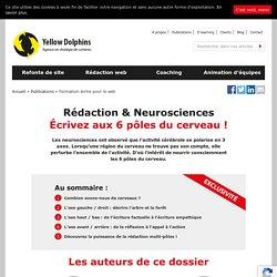 Comment écrire aux 6 pôles du cerveau - Rédaction et neurosciences - yellowdolphins.com