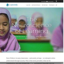 Learning & the Brain: Neuroscientist Immordino-Yang