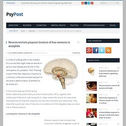 Neuroscientists pinpoint location of fear memory in amygdala