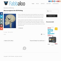 Neurosurgeons Are 3D Printing - Fabbaloo Blog - Fabbaloo