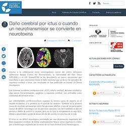 Daño cerebral por ictus o cuando un neurotransmisor se convierte en neurotoxina
