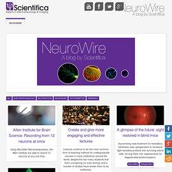 NeuroWire