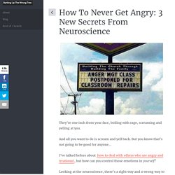 How to Never Get Angry: 3 New Secrets From Neuroscience