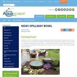 NEW! Spillway Bowl