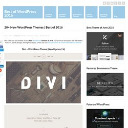 20+ New WordPress Themes