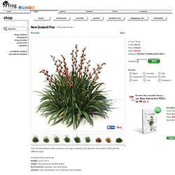 The Xfrog Store: New Zealand Flax