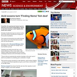 Acid oceans turn 'Finding Nemo' fish deaf