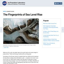 The Fingerprints of Sea Level Rise