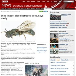 Dino impact also destroyed bees, says study