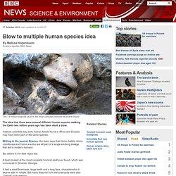 Blow to multiple human species idea