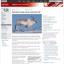 Reindeer body clock switched off