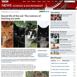 Secret life of the cat: The science of tracking our pets