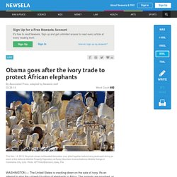 Obama goes after the ivory trade to protect African elephants